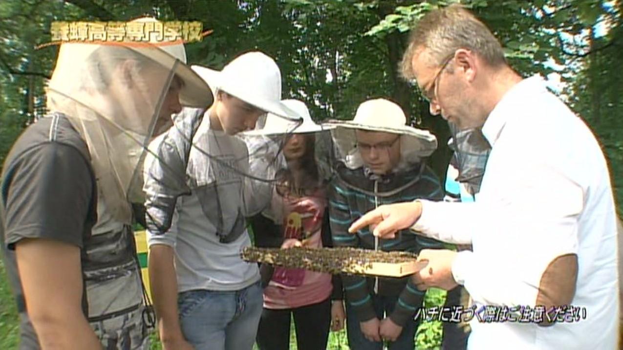 養蜂専門学校 / Pszczela Wola (TV TOKYO)