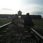 アウシュヴィッツ・ビルケナウ博物館取材 / Auschwitz – Birkenau(HTV)