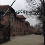 アウシュヴィッツ解放70周年 / 70 wyzwolenia Auschwitz (NNN)